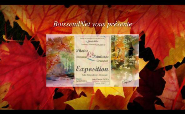 Diaporama élaboré - Exposition Boisseuil / Chalucet